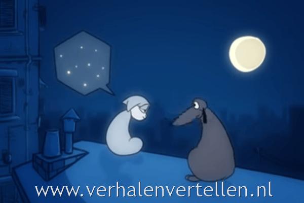 nacht zonder sterren: animatiefilmpje met een goed verhaal